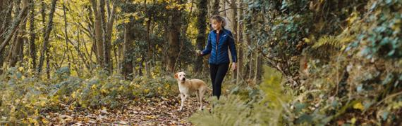 How walking strengthens your immune system: join the hike!